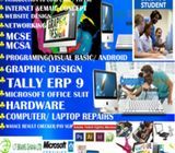 IT BRAINS GHAN LIMITED COMPUTER COLLAGE OF EDUC