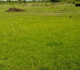 plots of land for sale at Airport hills