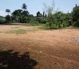 1 acre land is located in Roman Ridge