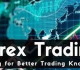 Best Forex Trading Training Centre