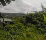 Prime Area (Peduase Ashesi) land for sale