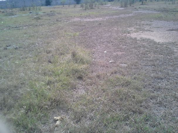service plot for sale at Tantra hill near Achimota