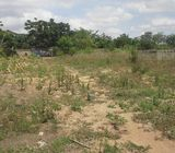 2.6 acre land with warehouse and offices is up for sale at Taifa