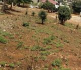2 Registered plot of land for sale @ New Bortianor