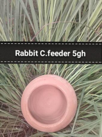 Rabbit Ceramic Feeders