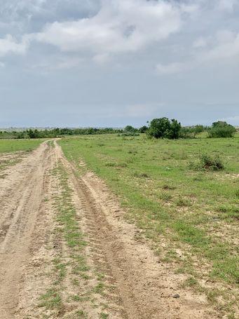 REAL ESTATE LAND FOR BUILDING AT AFIENYA