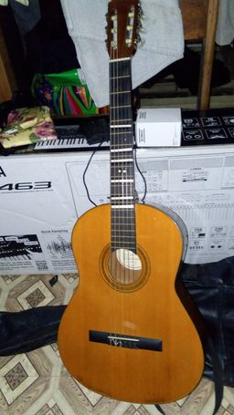 Acoustic guitars with bag