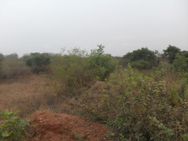 8 PLOTS OF LAND AVAILABLE FOR SALE AT PRAMPRAM