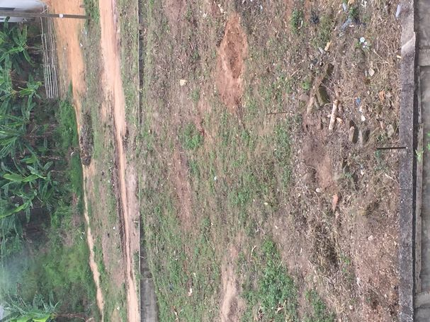 2 plots of land at Ituma