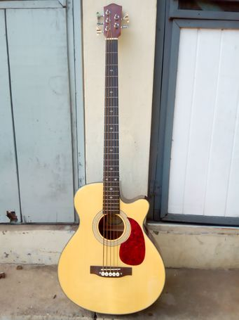 Semi-acoustic bass guitar (5-strings)