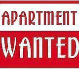 Need Apartment