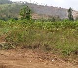 Land for sale at Victoria City near Amasaman.