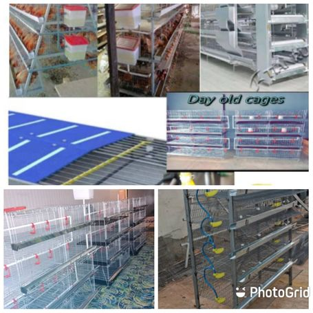 Chicken cages, all capacities and accessories