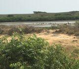 Beach front land for sale at Prampram