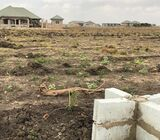 Titled plots for sale@Tema community 25.