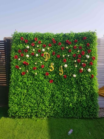 Backdrop For All Occasions