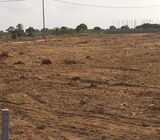 Affordable Roadside Lands @ Adenta Amrahia