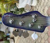 Flextool 5ST HG, 5 String Bass
