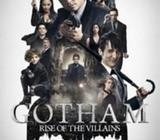 Gotham ( TV Series 2014 To 2016 ) Complete Season 1 AND Season 2