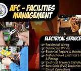 Professional Electrical Service