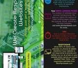 Responsive Websites from Shinhandsweb